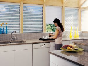 Hunter Douglas Nantucket Shades